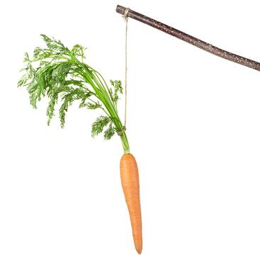 carrot incentive reward.jpg